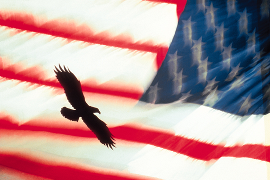 Photograph of American Flag and Eagle